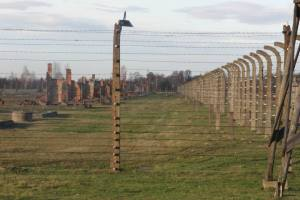 Electrified barbwire fence.